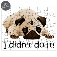 I didnt do it Puzzle