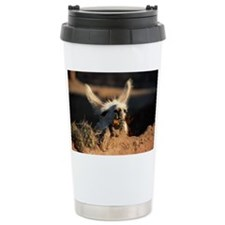 LLAMA, NEAR TILCARA, NORTHWEST  Travel Mug