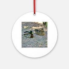domestic ducks Round Ornament