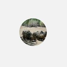 javelina - desert wild pigs Mini Button