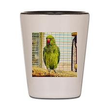 green parrot Shot Glass
