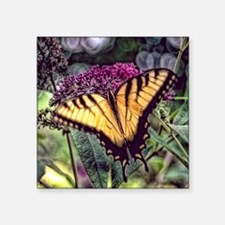 """monarch butterfly Square Sticker 3"""" x 3"""""""