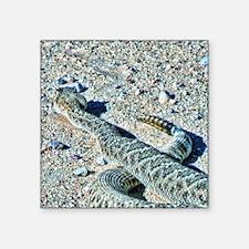 "diamondback rattlesnake Square Sticker 3"" x 3"""