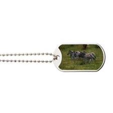 GROUP OF ZEBRAS 3 Dog Tags