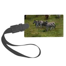 GROUP OF ZEBRAS 3 Luggage Tag