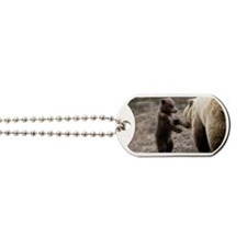 BROWN GRIZZLY BEAR MOTHER AND CUB Dog Tags