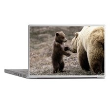 BROWN GRIZZLY BEAR MOTHER AND CUB Laptop Skins