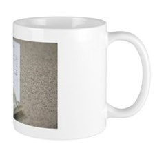 Cash and a receipt on a counter Mug