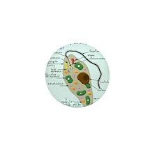 Euglena square Mini Button
