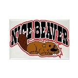 Beaver Magnets