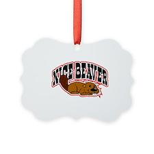 Nice Beaver Ornament