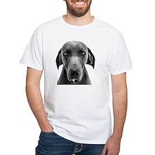 Blue weimaraner dog staring Shirt