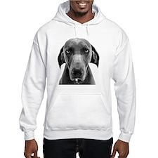 Blue weimaraner dog staring Hoodie