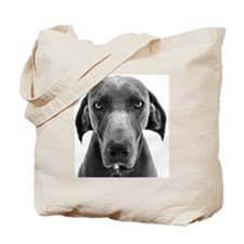 Blue weimaraner dog staring Tote Bag