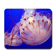 Jelly fish Mousepad