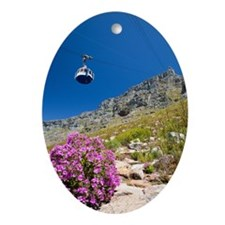 Table Mountain, Cape Town, South Afr Oval Ornament