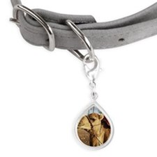 Camel in Morocco Small Teardrop Pet Tag