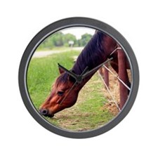 Horse is grazing Wall Clock