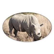 White Rhino Decal