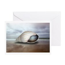 Surrealistic Seashell - Large Notecards (Pk of 10)