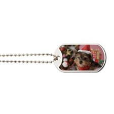 Yorkshire Terrier Puppy and Christmas Dog Tags