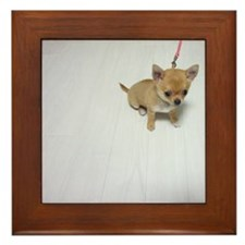 Puppy  Framed Tile