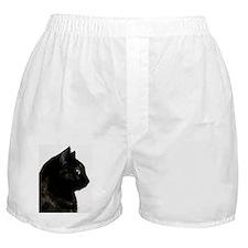 Cat agents white background. Boxer Shorts