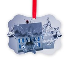 Model home sinking in water Picture Ornament