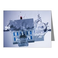 Model home sinking in water Note Cards (Pk of 10)