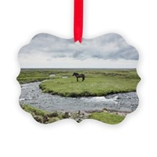 Horse standing near water Ornament