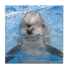 Dolphin Gel Mouse Tile Coaster