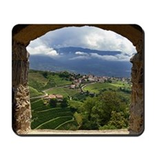 framed view Mousepad