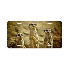 Three Meerkats standing Aluminum License Plate
