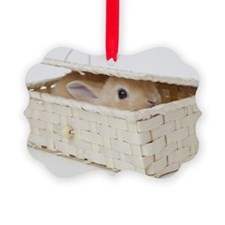 A rabbit is in a basket.Netherlan Ornament