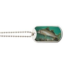 Snook Dog Tags