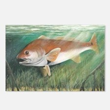 Redfish Postcards (Package of 8)