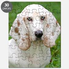 Paul Newman Splendor in the Grass Puzzle
