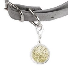 Close up of champagne bubbles Small Round Pet Tag