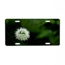 Flower of one wheel Aluminum License Plate