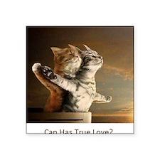 """Titanic Cats Square Sticker 3"""" x 3"""""""