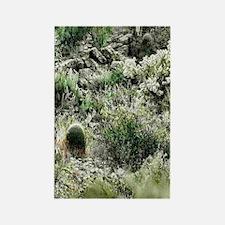 arizona desert 2 Rectangle Magnet
