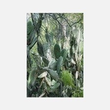 prickly pear forest Rectangle Magnet