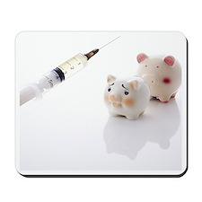 Piggy banks and syringe Mousepad