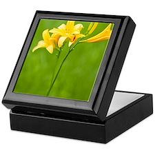 Daylily of oze Marshland Keepsake Box