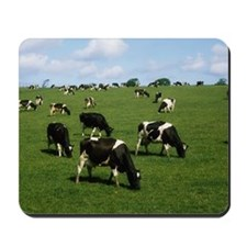 Ireland, Dairy Cattle Mousepad