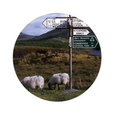 County Galway, Ireland, Road Sign N Round Ornament