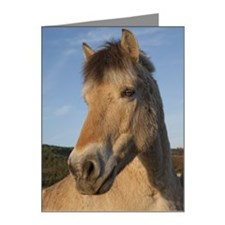 A Norwegian Fjord Horse Note Cards (Pk of 20)