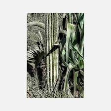 saguaro - agave cactus Rectangle Magnet