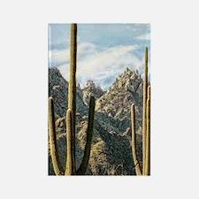 duo saguaros Rectangle Magnet