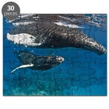 Humpback Whale Mother & Calf Puzzle